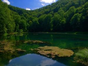 Croatie Le parc naturel de Papuk classé à l'Unesco